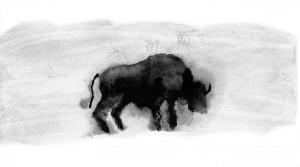 bison-720