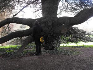 Jacqueline and Tree at Newstead Abbey